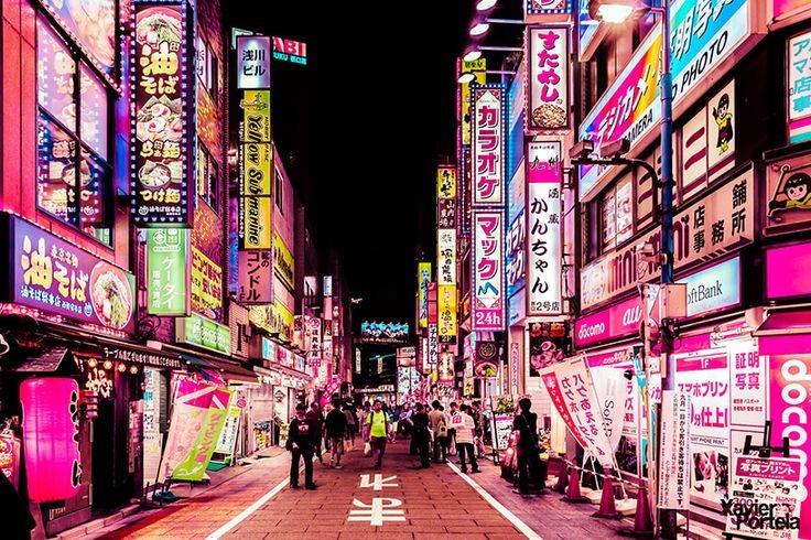 Nocturnal Walking Tour