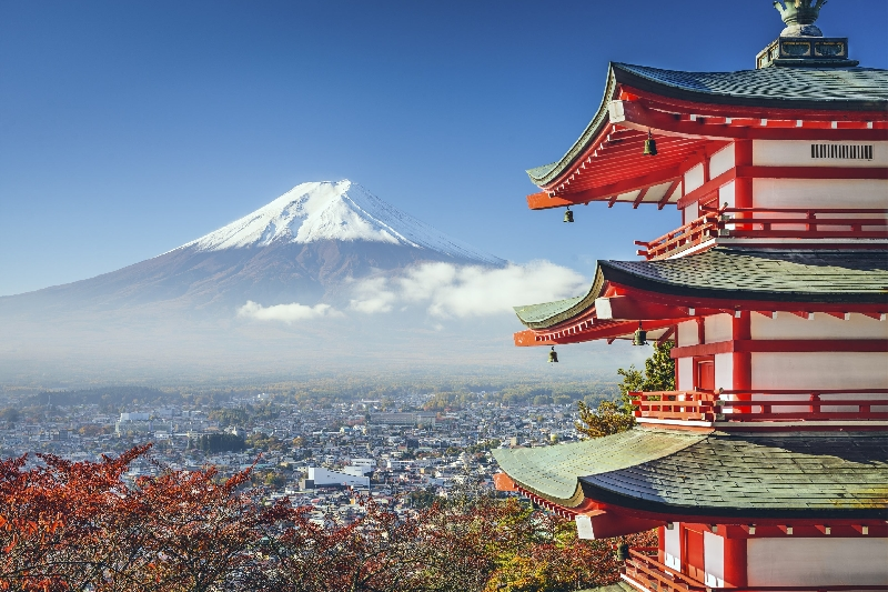 Private tour from Tokyo to Mount Fuji  1